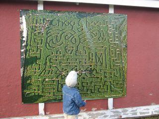 Yup_thats_a_maze