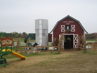 Three cedars farm _ play area