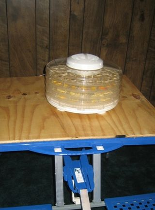 Dehydrator table