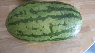 Big watermelon