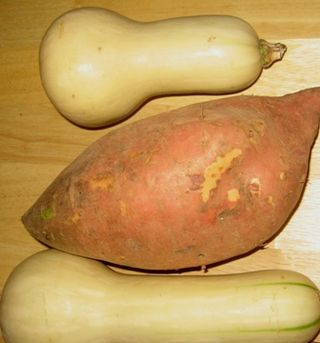 Potatoes and squash