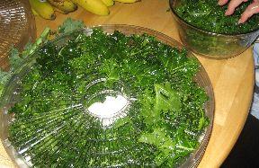 Kale crisps helper