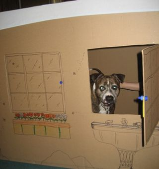 Fort_pup