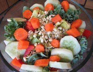 Salad_supreme