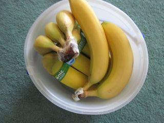 Banana bucket