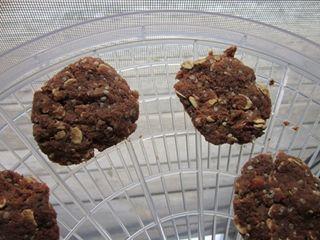 Dehydrator_pulp cookies