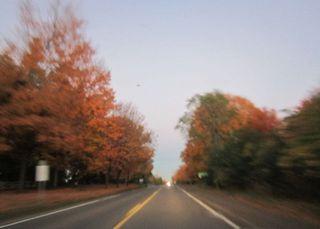 Drive colors