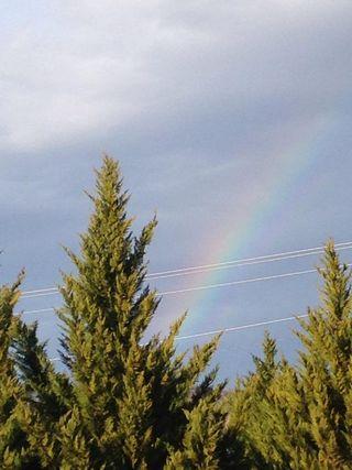 RainbowForge
